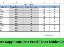 copy paste data excel tanpa hidden cell