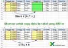 shortcut copy data ke tabel yang difilter