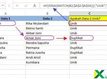 mencari duplikat dari dua data excel